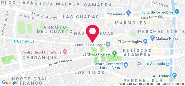 Calle Ingeniero de la Torre Acosta, 1 Local 3, 29007, Málaga